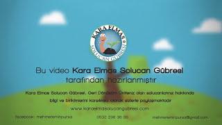 Kara Elmas Solucan Gübresi Animasyon Filmi