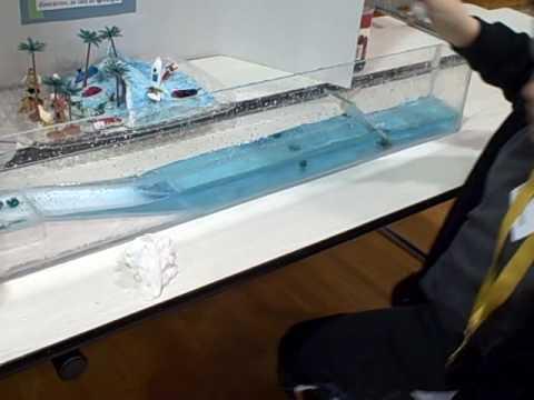 DC9DZ: Project Tsunami – Power Amplifier (PA) using 4CX10000D
