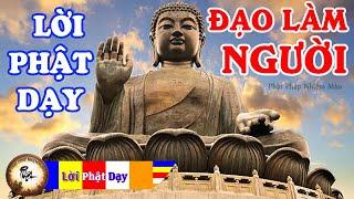 Nghe truyện Phật này mỗi đêm Học Lời Phật dạy rất dễ ngủ gặp nhiều may mắn p1, Phật pháp Nhiệm màu