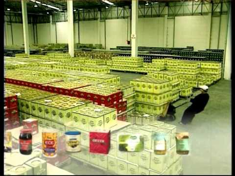 Turkish Olive&Oil Industry
