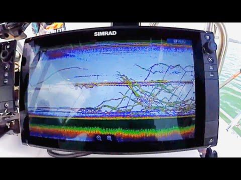 CHIRP Sonar Basics On DEEP Striped Bass! Lake Lanier Stripers