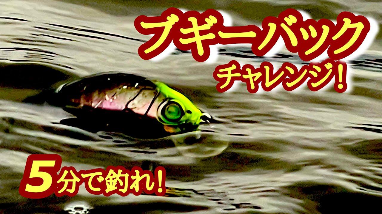 【5分で釣れ!2021.6.12】ブギーバックチャンネル!【琵琶湖バス釣り】