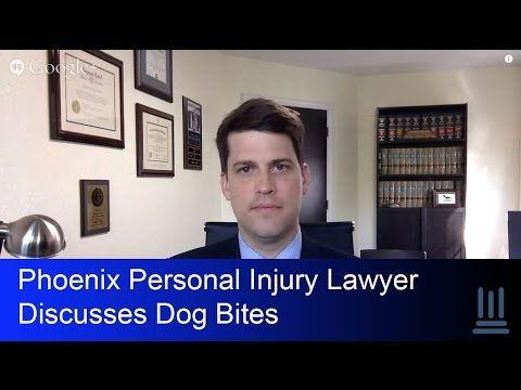 Phoenix Personal Injury Lawyer Discusses Dog Bites- Kelly Law Team