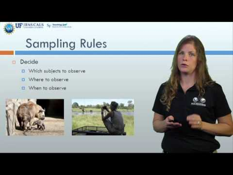 Methods of sampling animal behavior