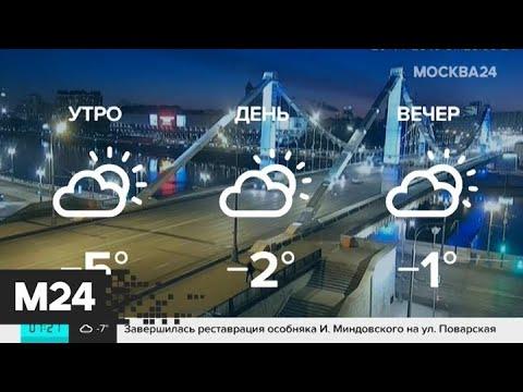 """""""Утро"""": прохладная погода ожидается в столичном регионе 26 ноября - Москва 24"""