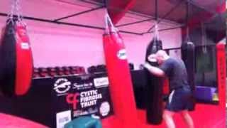 Everlast Grappling Training MMA Gloves Review