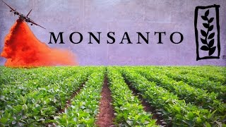 From youtube.com: Monsanto: The Company that Owns the World's Food Supply {MID-294564}