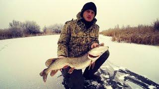Жерлицы. Зимняя рыбалка. Ловля щуки на жерлицы. Мото рыбалка. Щука.