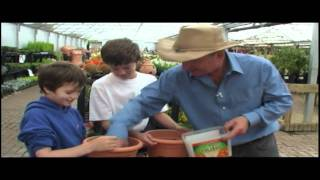 Kids planting bulbs in pots - for mothers day gifts - at Pughs garden village, in Radyr near Cardiff