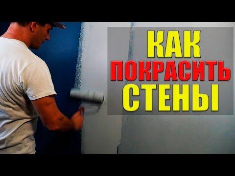 Как красить стены в квартире своими руками: секреты идеальной покраски стены без разводов