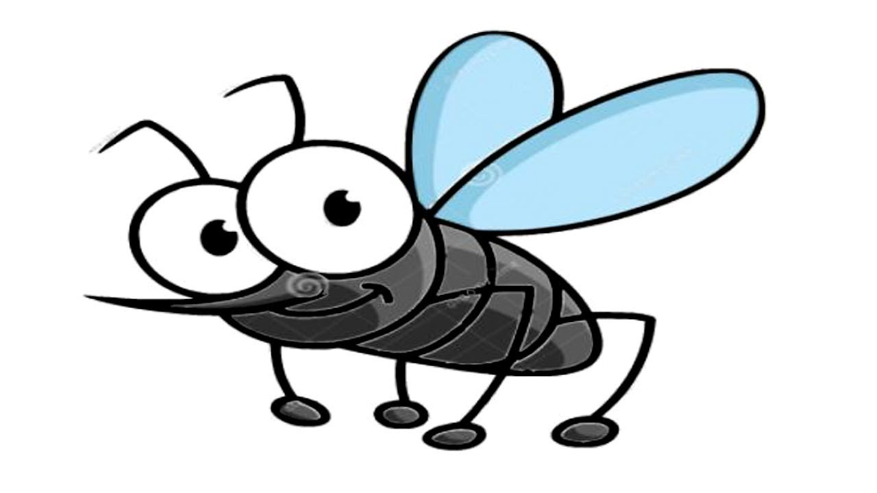 Mosquito coloring page - Mosquito free printable coloring pages ... | 720x1280