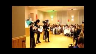 Mariachi Band in Chicago