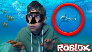THERE'S A MEGA SHARK TO WATCH! (Roblox Obby)