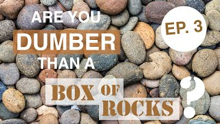 Are You Dumber than a Box of Rocks? Game Show Episode 3