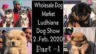 Wholesale Dog Market Ludhiana Dog Show 2nd. Feb. 2020 Part 1
