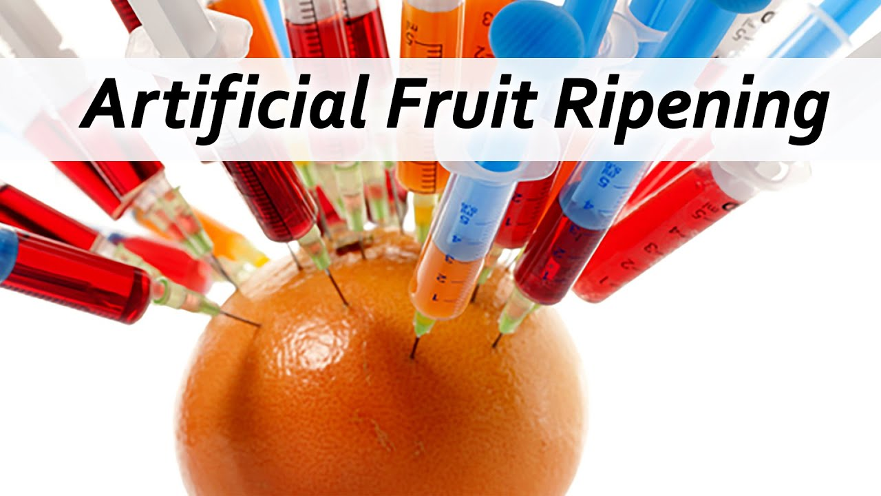 Artificial Fruit Ripening  Watch Out!!!   YouTube