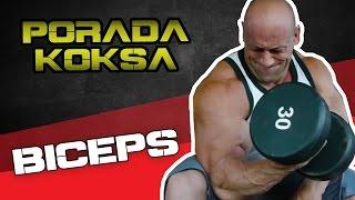 Jak ćwiczyć biceps ? [PORADA HARDKOROWEGO KOKSA] 2017 Video