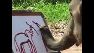 An elephant paints a self-portrait with his trunk