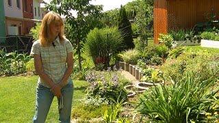 Склон в моем саду