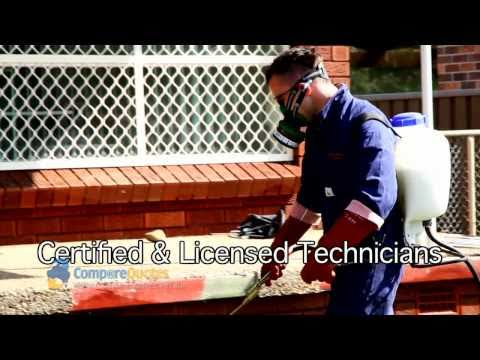 ABC Pest Control | Sydney Pest Control | Pest Control | Bed Bug Control | Bed Bug Detection