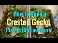 How to Build a Crested Gecko Plastic Bin Enclosure