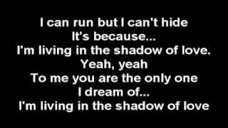 Celine Dion - Shadow Of Love {Lyrics}