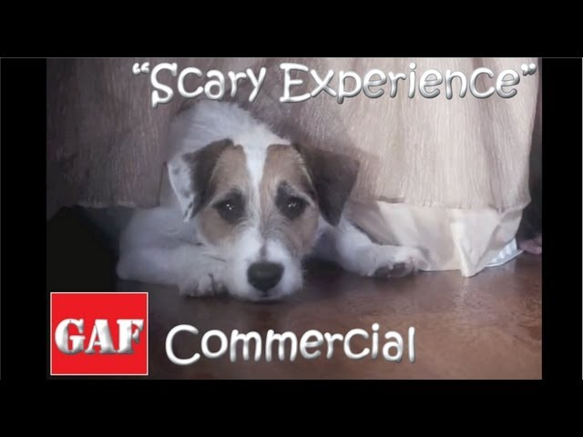 "Jesse's GAF Roofing Commercial ""Scary Experience"""