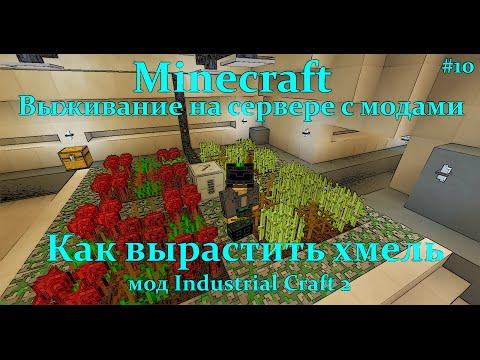 Minecraft Как вырастить хмель/Inductrial Craft2 Автосадовник, селекция растений(Хмель)
