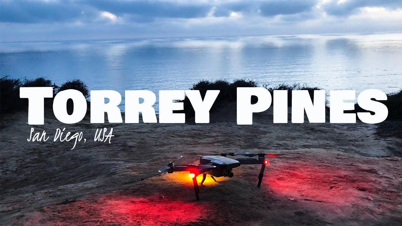 Torrey Pines DRONE 4K│San Diego