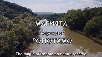 Магията на резерват Ропотамо