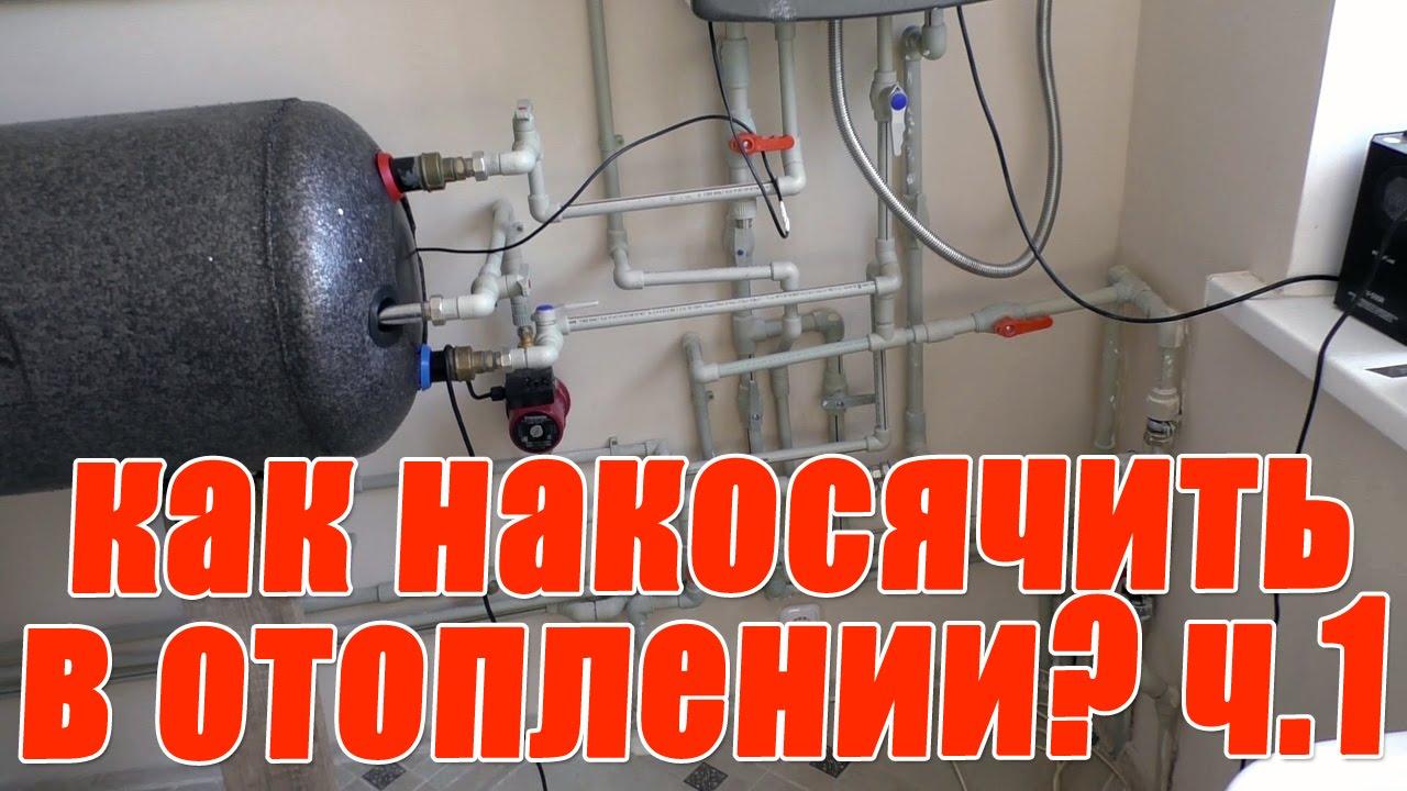 Добыча бортевого мёда в Башкортостане - YouTube