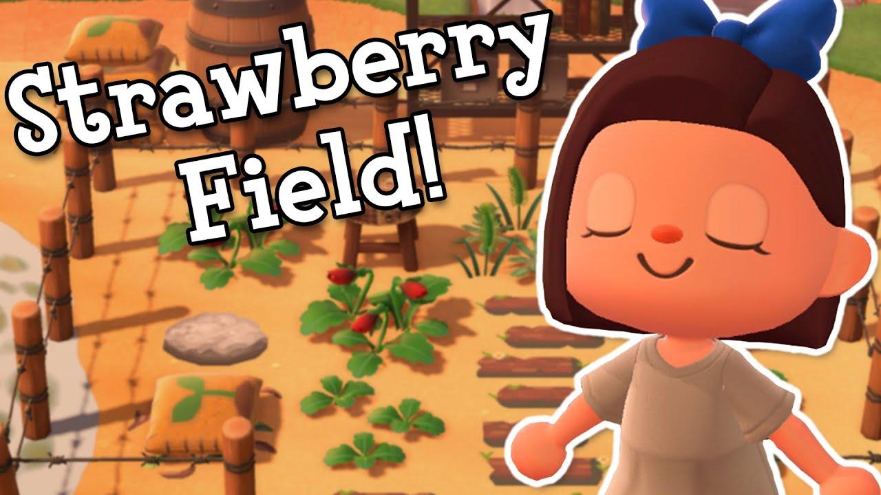 Strawberry Field Build!