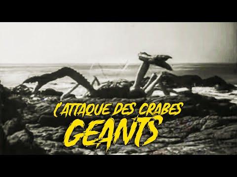 l'attaque-des-crabes-géants-(film,-1957)-sf/horreur