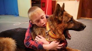 Собака из полиции озвучивает свою роль в фильме