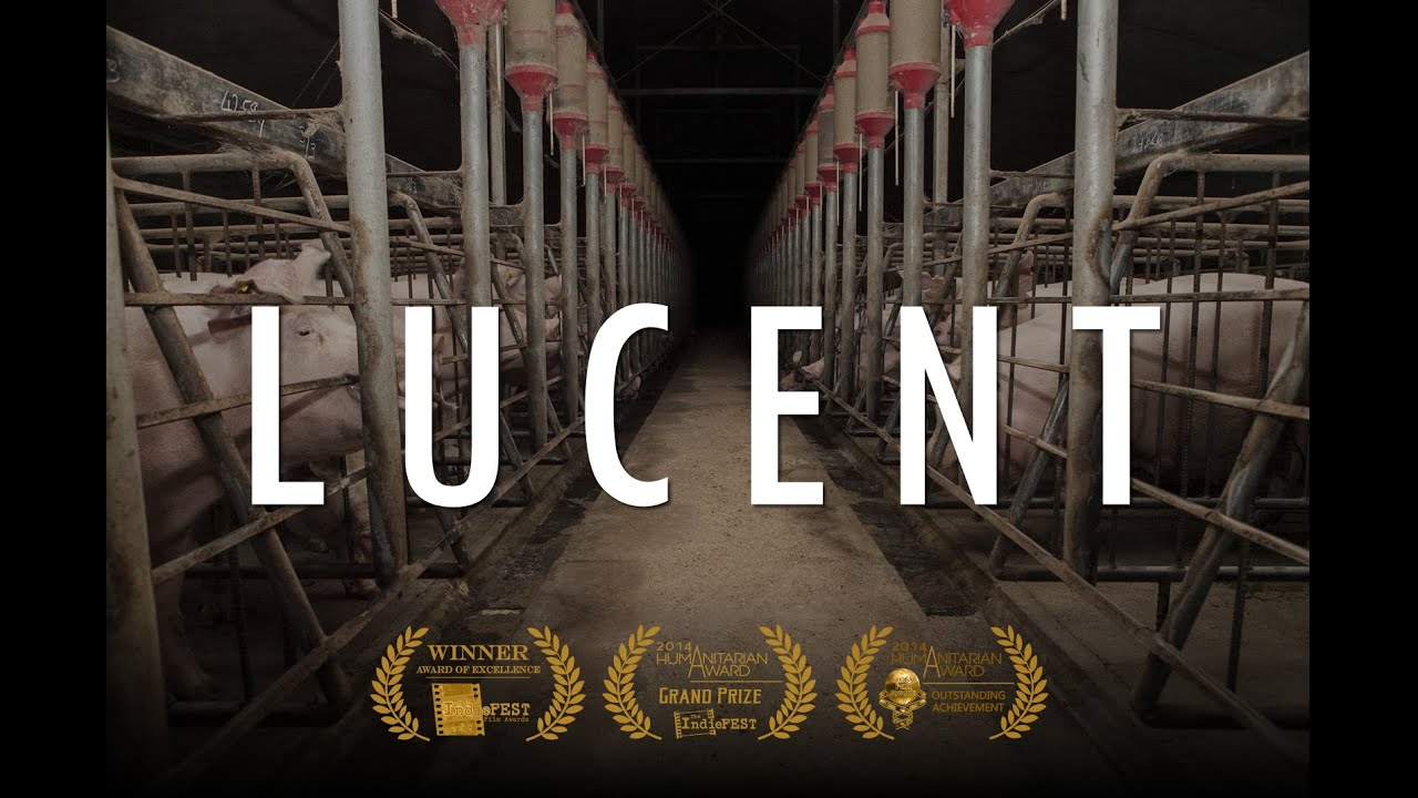 Lucent (2014) - full documentary LUCIFER ENTERPRISE