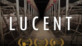 Lucent (2014) - full documentary thumbnail