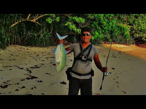 Shore Fishing ANDAMAN Islands | Part 2 | Bluefin Trevally