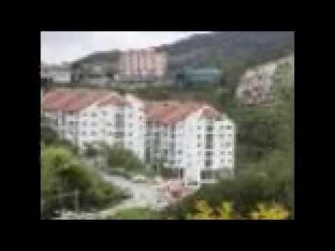 Hotel Murah Di Brinchang Cameron Highland