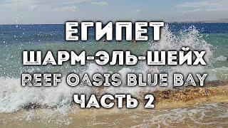 ЕГИПЕТ Шарм эль Шейх отель Reef Oasis Blue Bay Resort 5 март 2020 часть 2