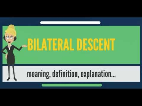 What is BILATERAL DESCENT? What does BILATERAL DESCENT mean? BILATERAL DESCENT meaning
