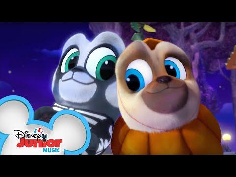 On Halloween Night   Music Video   Puppy Dog Pals   Disney Junior