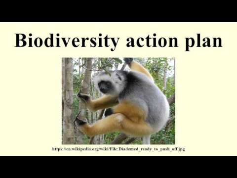 Biodiversity action plan