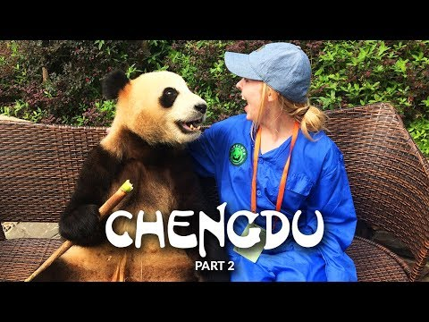 China Ep 6 | Chengdu Pt 2 | Some Time With Ya-Shi The Panda