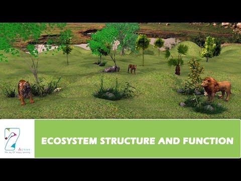 ECOSYSTEM STRUCTURE AND FUNCTION _ PART 01