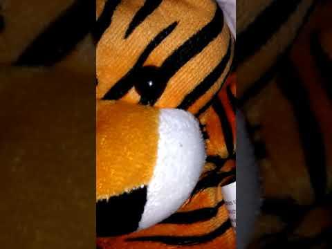 Omg!!! I escaped the dark tigers home
