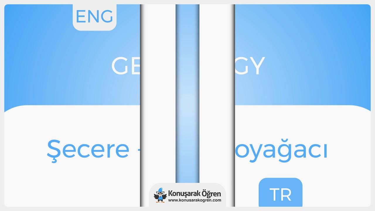 Genealogy Nedir Genealogy Ingilizce Türkçe Anlamı Ne Demek