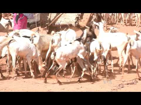 Somalia Faces Unprecedented Drought