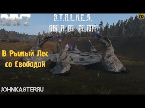 В Рыжий Лес со Свободой ☢ S.T.A.L.K.E.R.: Area Of Decay ☢ DayZ S.T.A.L.K.E.R. [4k]