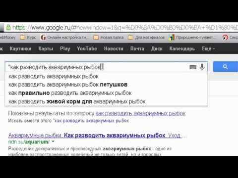 Как искать информацию в интернете? Инструкция.