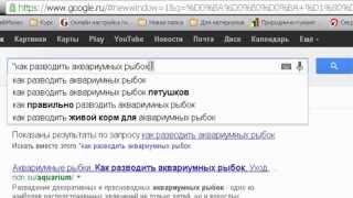 Как искать информацию в интернете? Инструкция.(Копирайтинг. Как правильно искать информацию в интернете? Инструкция. Страница с видео: http://kopitext.ru/novichkam/kak-pr..., 2013-09-19T10:35:22.000Z)